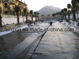 Film HDPE imperméable noir, feuille HDPE, géomembrane HDPE pour l'ingénierie