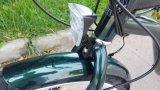 250W En15194 Hongduの電気自転車の人浜の巡洋艦のEバイクが付いている電気バイクのリチウム電池のディスクブレーキブラシレスモーターアルミ合金LCDの表示