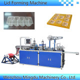 Automatische Plastikplatte/Tellersegment, das Maschine bildet