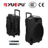 Professionele Spreker Bluetooth, BR, USB en Draadloze Handbediende Microfoon Twee