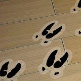 Etiqueta creativa dos decalques do assoalho do grande formato do projeto