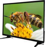 32 affichage à cristaux liquides sec de couleur de pouce HD DEL TV avec le prix bon marché