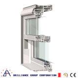 Schwenken-Systems-Doppeltes hing Fenster