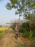 4m die benzinbetriebene Pole ausdehnbare Kette sah
