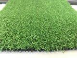 Campo de hierba / el césped de 12 mm / green
