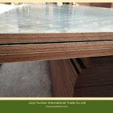 Le film phénolique a fait face au contre-plaqué/au bois de construction pour des matériaux de construction