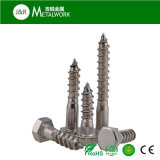 A2 A4 Acier inoxydable Ss304 Ss316 Hex Hexagon Head Self Tapping Coach Lag Wood Screw (DIN571)