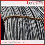 Heißes Walzen-StahlWalzdraht SAE-1008