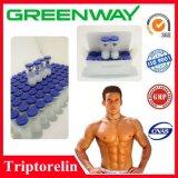 Pharmazeutisches chemisches Peptid Triptorelin Steroid Triptorelin für Bodybuilding
