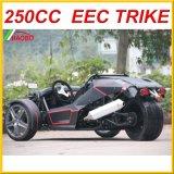 2017 электрическое Trike для взрослого