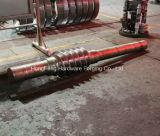 Arbre excentrique de pièce forgéee chaude d'acier du carbone