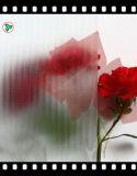 vidro figurado Mistlite decorativo desobstruído de 3mm