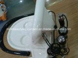 Pistor Lipo Gewehr Mesotherapy Nadel-freies Glutathion-Haut-Einspritzung-Gerät
