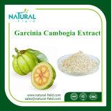 100% reiner Garcinia-Gummigutt-Auszug