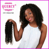 Il grande nero venerdì di ringraziamento di vendita per i capelli umani alla rinfusa dei fornitori
