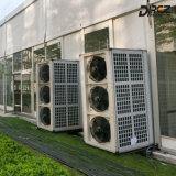 Condicionador de ar central da resistência de corrosão 30HP para barracas ao ar livre do evento desportivo