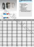 Selos mecânicos do anel-O (BT38)