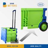 Caddie bleu-vert coloré de vitalité