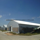 Prefabricated Poultry House for Algeria