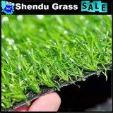 庭の総合的な草最もよい価格との20mm