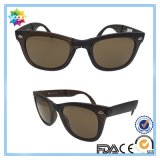 New Brand Plastic Frame Sports Fashion Óculos de sol