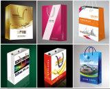 Sac de papier fait sur commande professionnel polychrome de cadeau/sac de papier d'achats