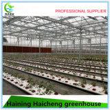농업 팽창식 유리제 온실
