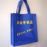 環境に優しい袋、Ecoの友好的なショッピング・バッグ(13032503)