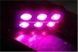 Voller Specturm 800W PFEILER LED wachsen für Gewächshaus/medizinische Pflanzen hell
