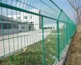 Ограждать ячеистой сети металла PVC Coated покрынный порошком гальванизированный