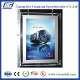 Alta qualità: Doppio contenitore chiaro trasparente laterale di acrilico LED