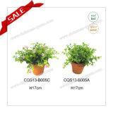 Planta artificial dos bonsais do fabricante de Cheapprofessional do produto novo mini para a decoração da HOME/escritório/tabela/carro
