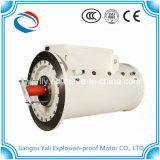 O motor de indução elétrica à prova de explosões da C.A. com personaliza a tensão