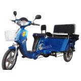 Pasajeros eléctrico triciclo ( TC- 007 )