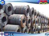 Piatto d'acciaio/bobina laminati a freddo per il materiale da costruzione (FLM-RM-032)