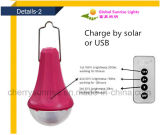 Fornitore del comitato solare fuori dal kit esterno alimentato solare di illuminazione del sistema solare di griglia