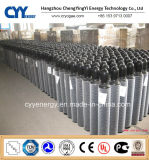 50L High Pressure Argon Seamless Steel Cylinder com ASME