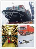 Consolideer a-klasse de Dienst van de Logistiek van China aan Duitsland