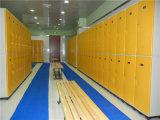 Bath部屋およびSwimming Poolのための防水および反Rust Plastic Locker
