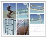プロジェクトのためのガラスが付いている贅沢なステンレス鋼階段柵
