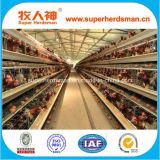 低価格の高品質電池の層の鶏のケージ