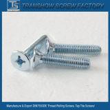 DIN7500d/E Gewinde-Rollen-Hahn Tite Schrauben
