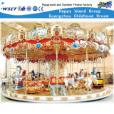 De elektrische vrolijk-gaan-Ronde Carrousel van de Kinderen van de Luxe Grote (a-10601)