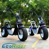 Harley 가장 새로운 Scrooter 작풍 전기 스쿠터 형식 도시 스쿠터 Citycoco
