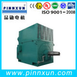 Herida Rotor Motor High Voltage Yrkk 3phase Motor