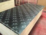 Contre-plaqué Shuttering de faisceau de peuplier/contre-plaqué de construction