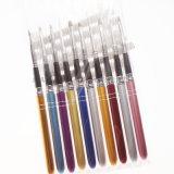 10 de nylon Uitrusting van het Product van de Manicure van de Schoonheid van de Borstel van de Spijker van de Kunst (B037)