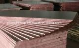 Dos veces que presionan la madera contrachapada Shuttering de 20m m