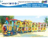 Campo de jogos ao ar livre dos miúdos elétricos dos brinquedos (M11-06806)