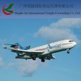 ハイチへの安いAir Freight Rates From中国